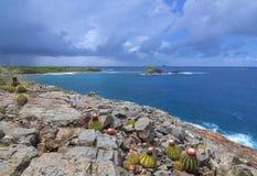 Punto rocoso en la isla caribeña fotografía de archivo