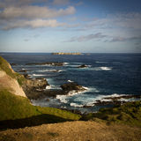 Punto Ross, isola Norfolk Immagini Stock