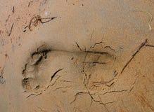 Punto sulla sabbia fotografia stock