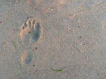 Punto umano sulla sabbia Immagini Stock Libere da Diritti