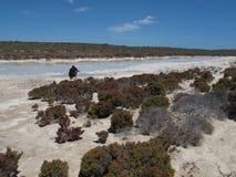 Punto Westernmost, baia dello squalo, Australia occidentale Fotografia Stock