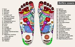 Puntos de la acupuntura en los pies Las zonas del reflejo en los pies CA Imagenes de archivo