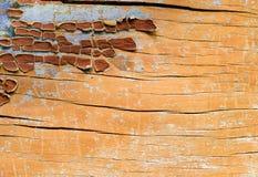 Puntos de la pintura en superficie de madera Imagenes de archivo