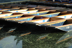 Punts at Cambridge Stock Images
