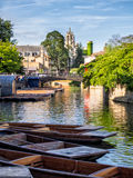 Punts lined up on river in  Cambridge England Royalty Free Stock Photo