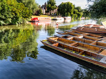 Punts lined up on river in  Cambridge England Stock Images
