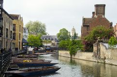 Punts on river Cam Stock Image
