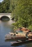 Punts on River Carn, Cambridge Stock Photos