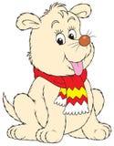 Pup Stock Photo