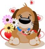 Pup del biglietto di S. Valentino Fotografia Stock