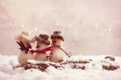 Pupazzi di neve della signora con il billbord per il vostro input Immagini Stock Libere da Diritti