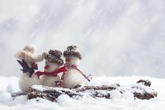 Pupazzi di neve della signora con il billbord per il vostro input Fotografie Stock Libere da Diritti