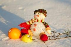 Pupazzo di neve immagini stock libere da diritti