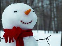 Pupazzo di neve allegro fotografia stock libera da diritti