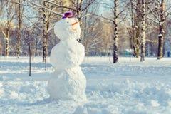 Pupazzo di neve con il cappello porpora Fotografia Stock Libera da Diritti