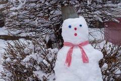 Pupazzo di neve con un secchio sulla sua testa vicino all'albero immagine stock libera da diritti