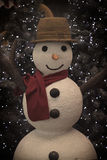 Pupazzo di neve d'annata accogliente Fotografia Stock