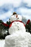 Pupazzo di neve di stile di paese Immagini Stock