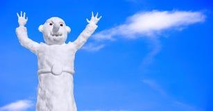 Pupazzo di neve divertente fotografia stock libera da diritti