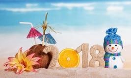 Pupazzo di neve e l'iscrizione 2018, noce di cocco, arancia, fiori Fotografia Stock