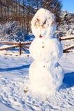 Pupazzo di neve e recinto coperti di neve immagine stock libera da diritti
