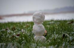 Pupazzo di neve in erba Fotografia Stock