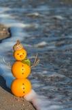 Pupazzo di neve fatto delle arance Immagine Stock