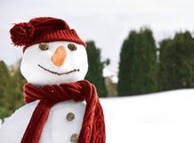 Pupazzo di neve felice fotografie stock libere da diritti