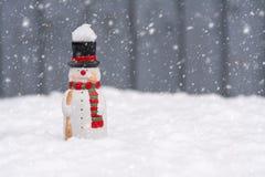 Pupazzo di neve felice che sta nel paesaggio di natale con copia-spazio Fotografie Stock