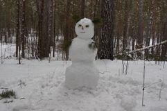 Pupazzo di neve in foresta in Siberia fotografie stock libere da diritti