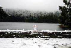 Pupazzo di neve miniatura sul bordo di un lago winter Fotografia Stock Libera da Diritti