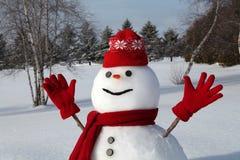 Pupazzo di neve in modo divertente Fotografia Stock