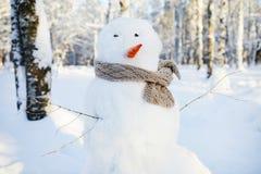 Pupazzo di neve nel parco di inverno fotografia stock libera da diritti
