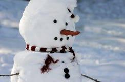 Pupazzo di neve nell'inverno fotografia stock