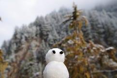 Pupazzo di neve sveglio fotografia stock libera da diritti