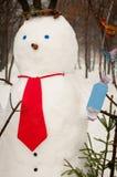 Pupazzo di neve sveglio all'aperto Immagini Stock Libere da Diritti