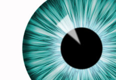 Pupil. Blue computer generated eye over the white Royalty Free Stock Photography