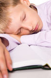 Pupil with book Royalty Free Stock Photography