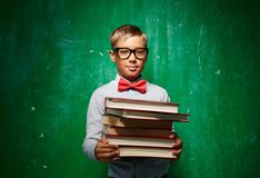 Pupil with books Royalty Free Stock Image
