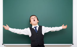 Pupil posing at school board, empty space, education concept Royalty Free Stock Image