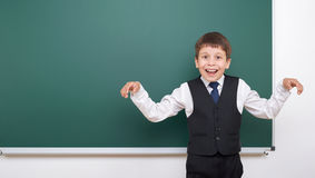 Pupil posing at school board, empty space, education concept Stock Photos