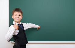 Pupil posing at school board, empty space, education concept Royalty Free Stock Photo