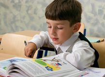 Pupil reading Royalty Free Stock Photos