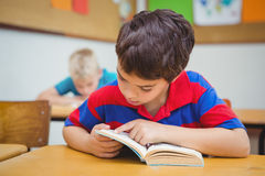 Pupil reading a school book. At the elementary school Royalty Free Stock Photos