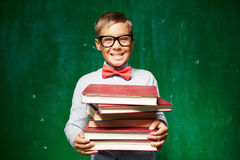 Pupil with textbooks Stock Image
