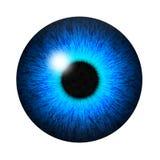 Pupilla isolata dell'occhio azzurro Fotografie Stock