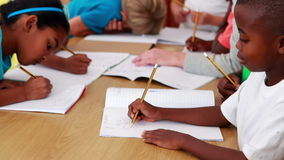 Pupils drawing in notepads during class. In elementary school stock video footage