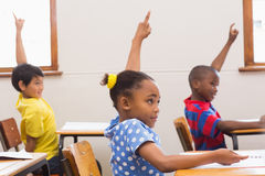 Pupils raising hand in classroom royalty free stock photography
