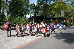 Pupils and teachers at the Singapore Zoo. Royalty Free Stock Image