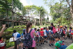 Pupils and teachers at the Singapore Zoo Stock Photo